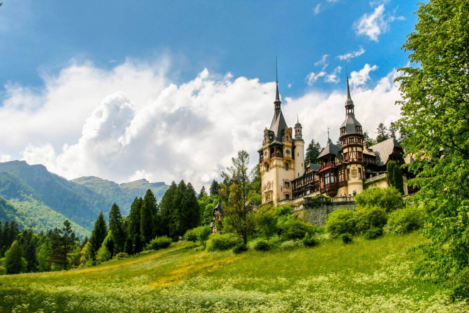 Two Castles in One Day Tour