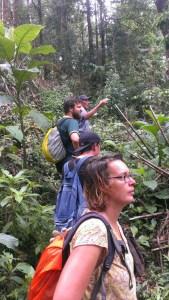 Auf den Spuren des Quetzal