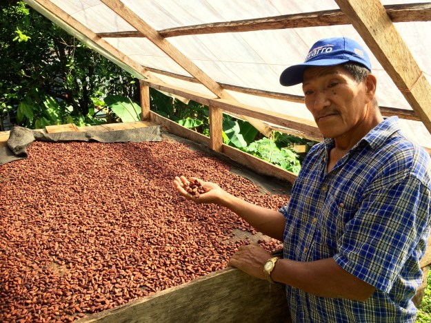 Dionicio proudly presents his fermented and dried seeds. This is how the beans are sold for shipping.