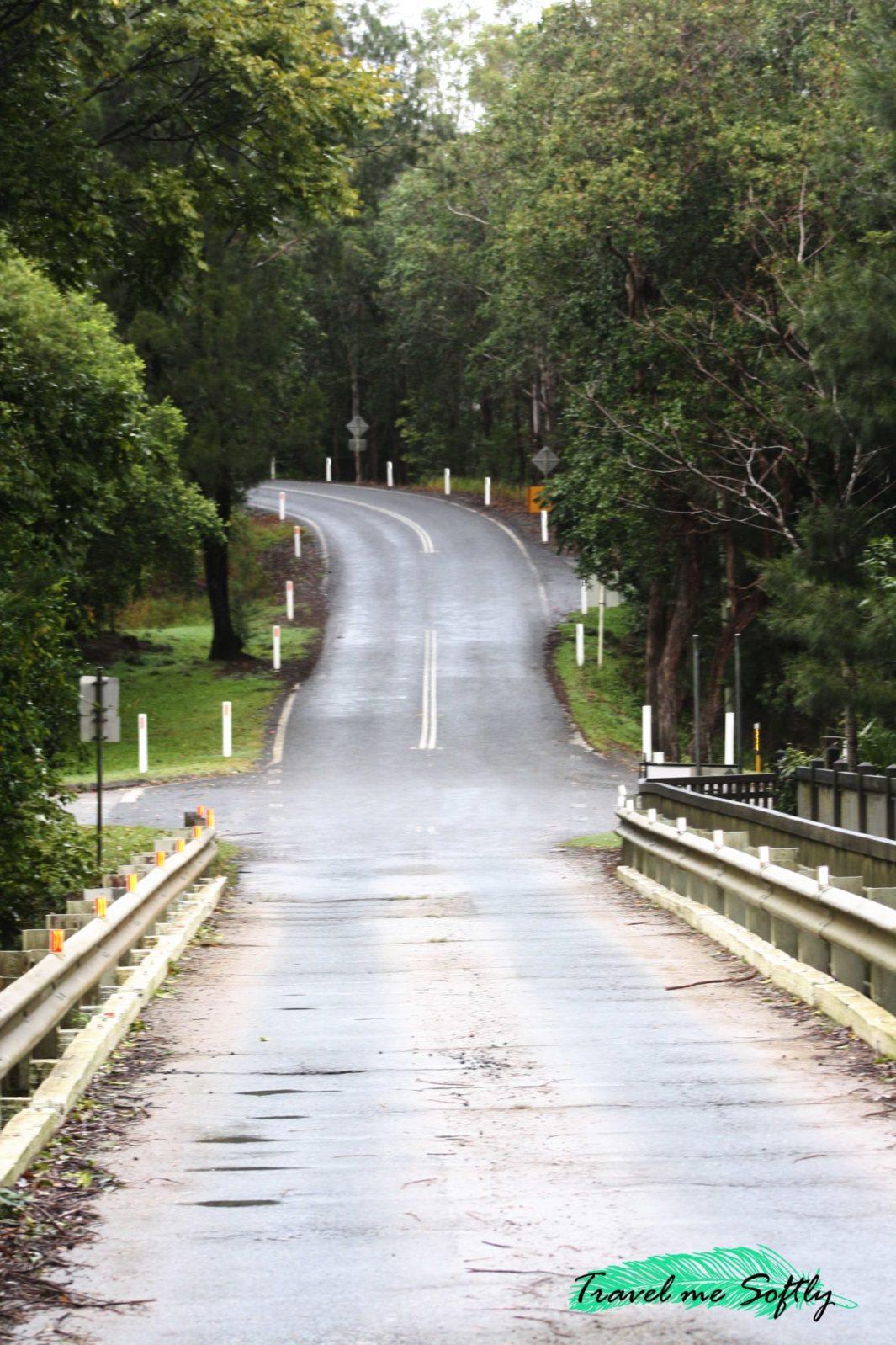 carretera eungella national park