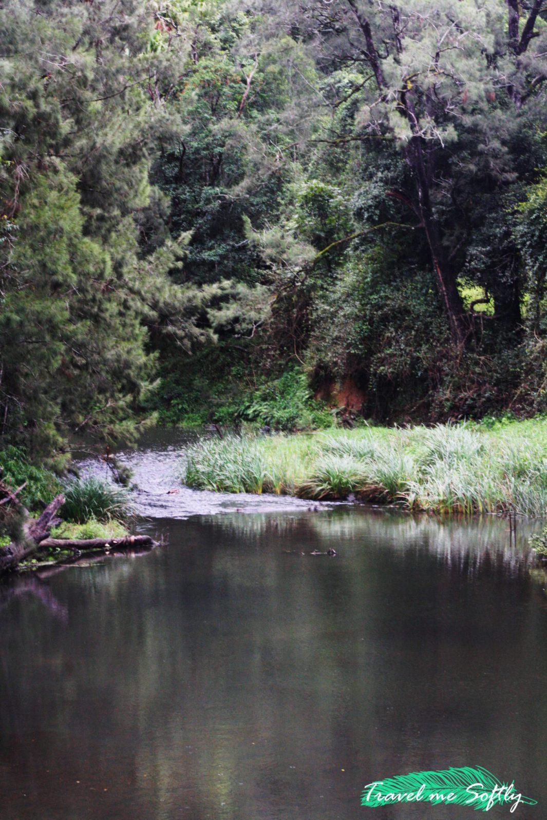 Broken River Eungella