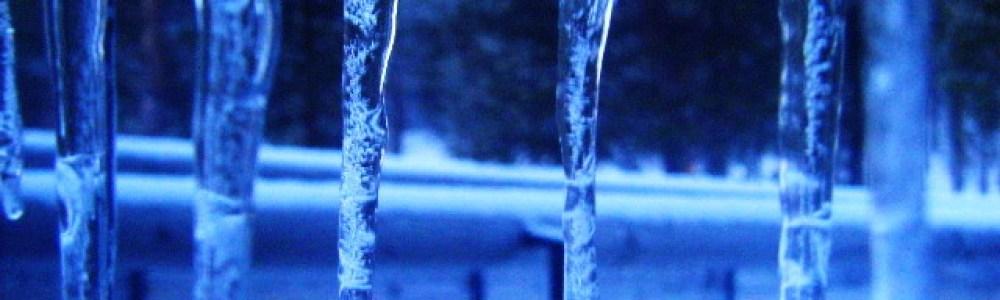 Más allá del círculo polar ártico: la magia de Laponia