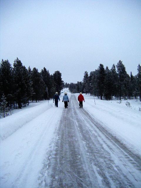 viaje a laponia nieve
