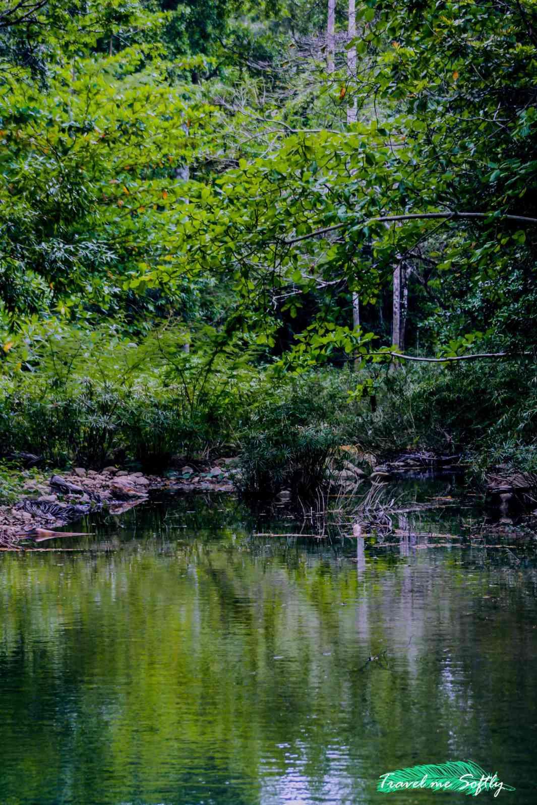 el cubano naturaleza trinidad