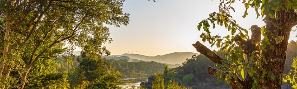Visitar Galicia para enamorarte del norte