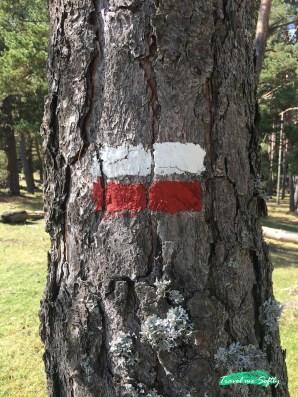 marca gr11 pirineos senderismo
