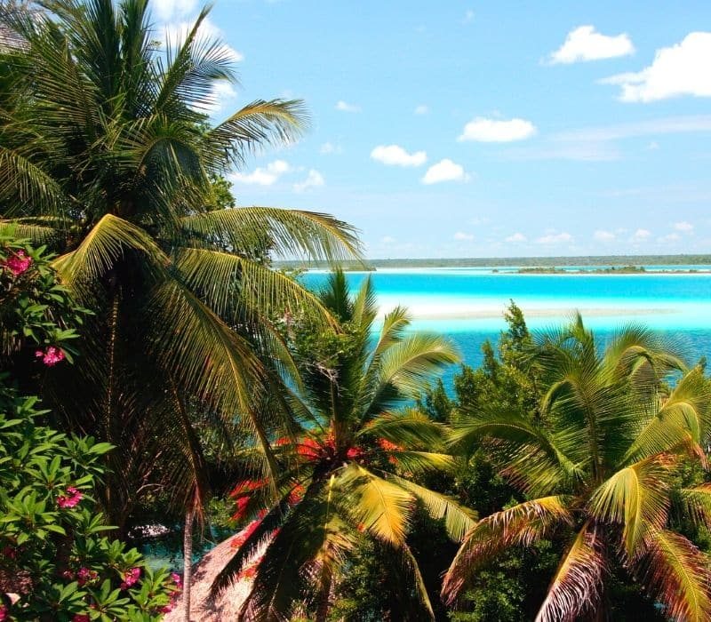 bacalar, mexico is a tropical paradise with bright blue water and palm trees
