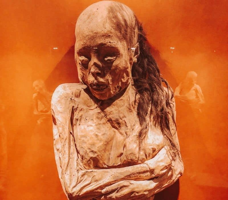 mummified human body
