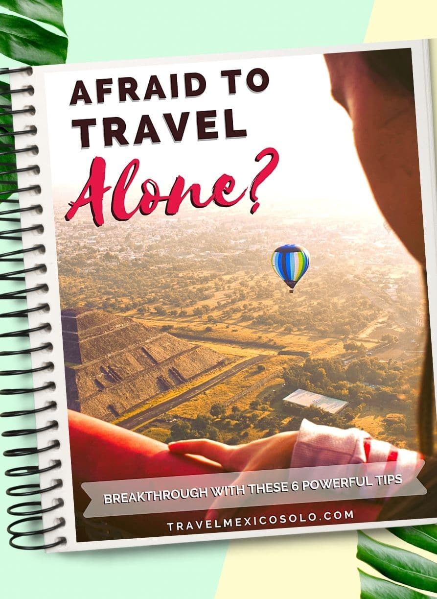Cover of Afraid to Travel Alone?
