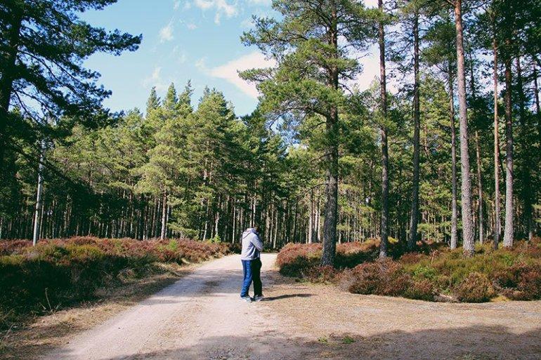 Tra husky, renne, boschi e laghi al Cairngorms National Park e dintorni