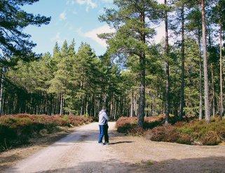 Cairngorms-national-park-foresta-scozia