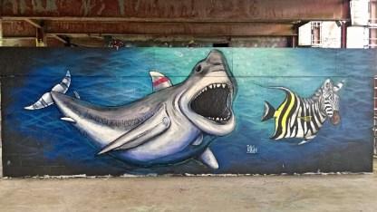 teufelsberg-street-art-hai