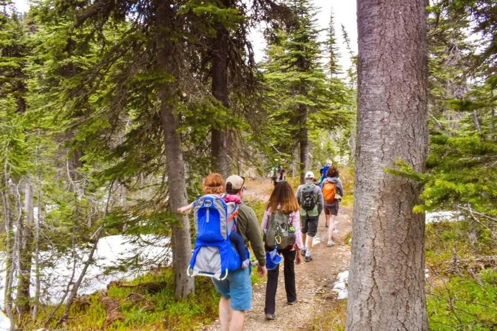 Hiking down Whitefish Mountain