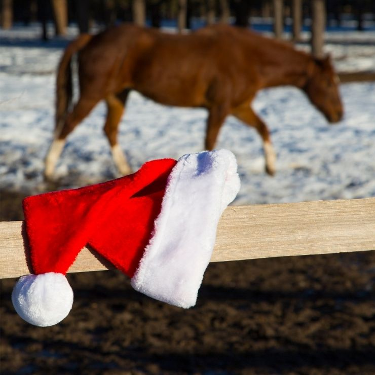 Santa Christmas hat hanging over a fence post by a snowy pasture with a horse.