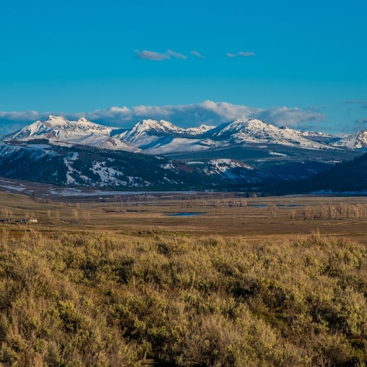 Lamar Valley under the Big Sky in Yellowstone National Park