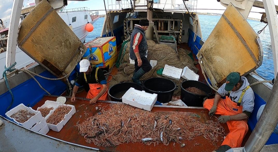 puglia cosa vedere mercato pesce