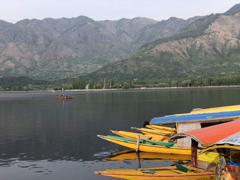 dal lake pics