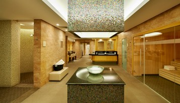 Willow Stream Spa Fairmont The Palm - - Wet Area