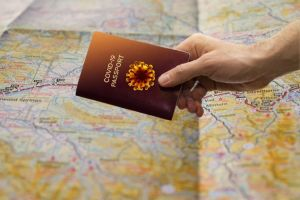 UK COVID-19 Vaccine Passport