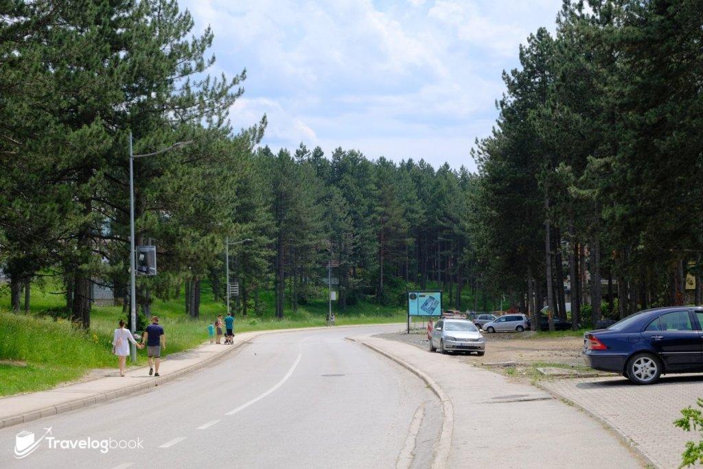 步行往鎮中心的路上,旁邊已然是森林!