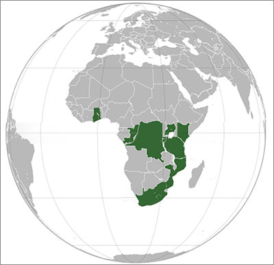 Africa Roaming Mobile Phone