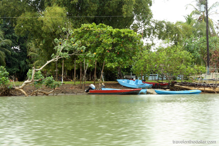 Canoes at Mangrove tour at Manuel Antonio Park