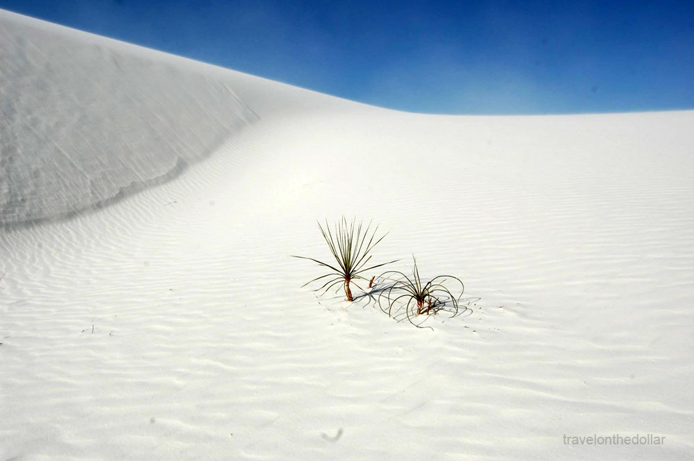 white_sands_nm4