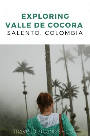 Valle de Cocora is one of the highlights of hiking in Colombia. Check out our complete guide for getting to Salento and what to expect on the trail.