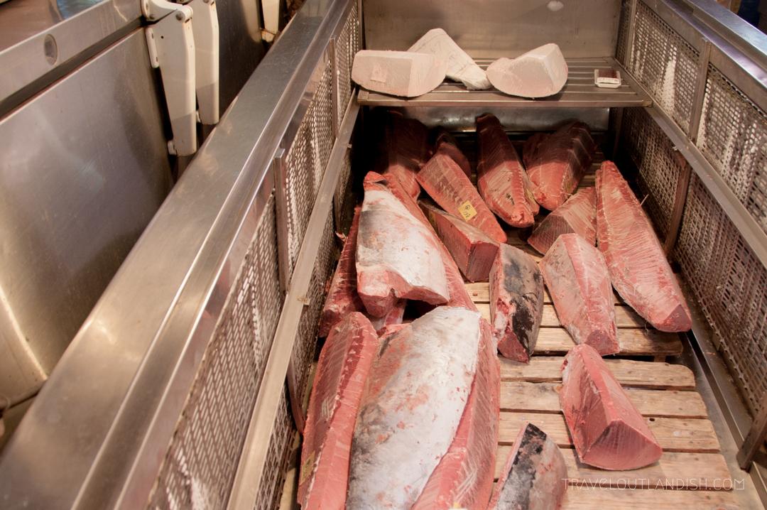 Blue Fin Tuna at Tsukiji Fish Market