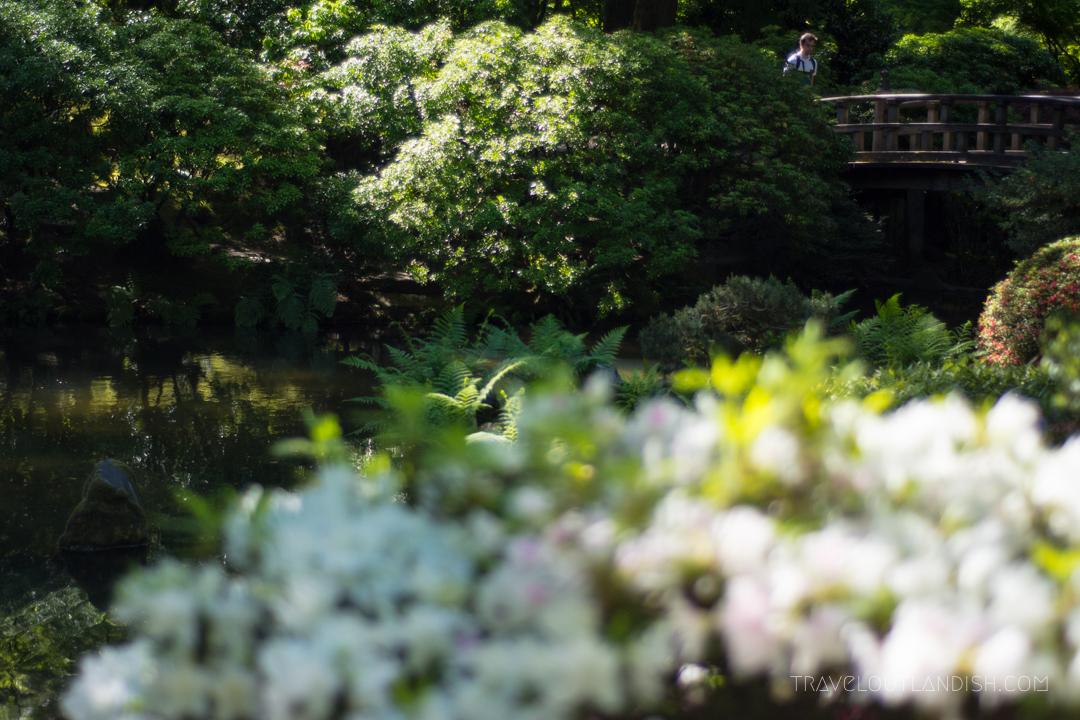Bridge at Portland's Japanese Garden