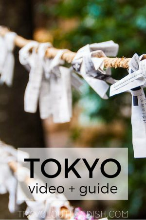 Tokyo is one hell of a city. Get inspired with a Tokyo travel video, and check out some fun things to do in Tokyo.