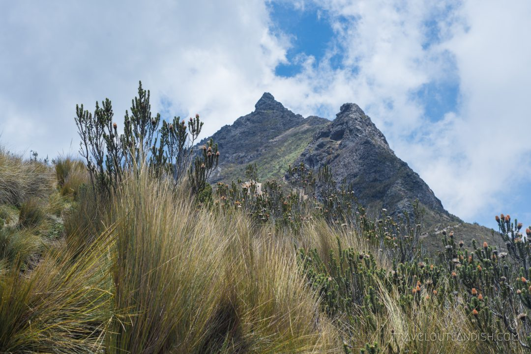 The Summit of Rucu Pichincha