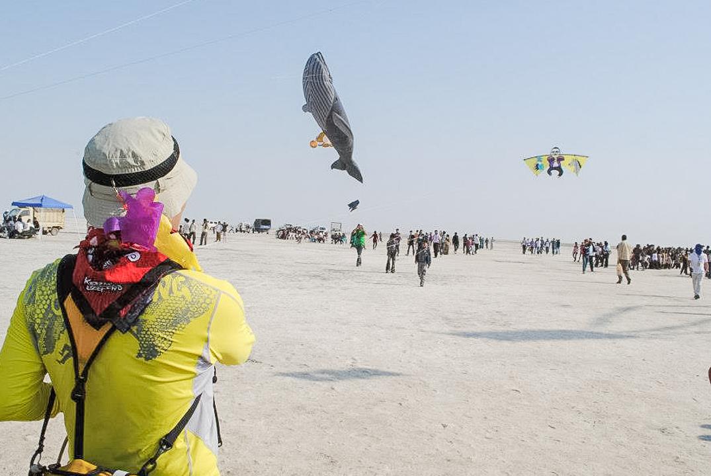 Weird World Festivals 2019 - Gujarat Kite Festival