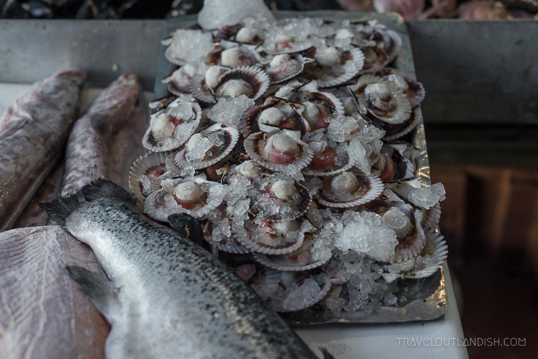 Valparaiso Fish Market - Clams