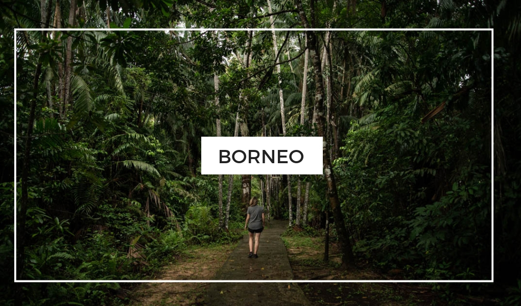 Destinations - Borneo