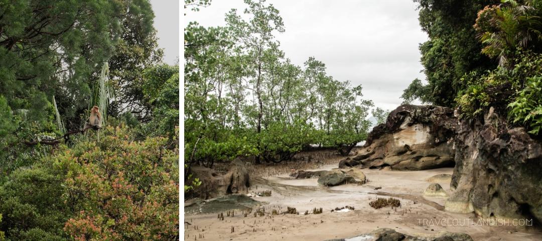 Bako National Park - Telok Delima