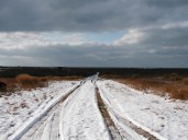 Snowy road at Sanford Farm.