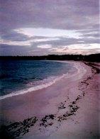 Pink sand beach; Half Moon Bay