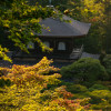 Temple of the silver pavilion in Kyoto,Travel Photo Mondays #18