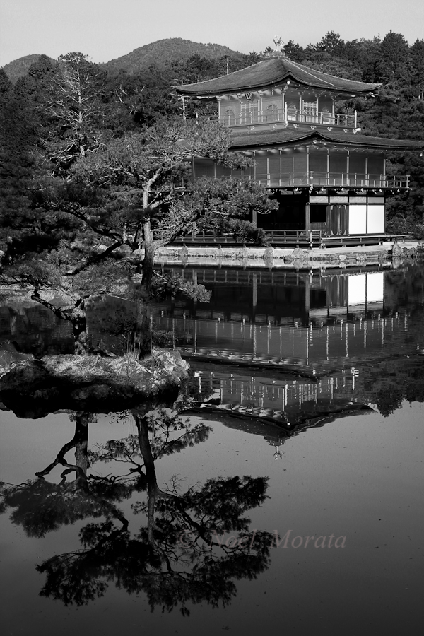 Golden Temple at Kyoto,Travel Photo Mondays #20