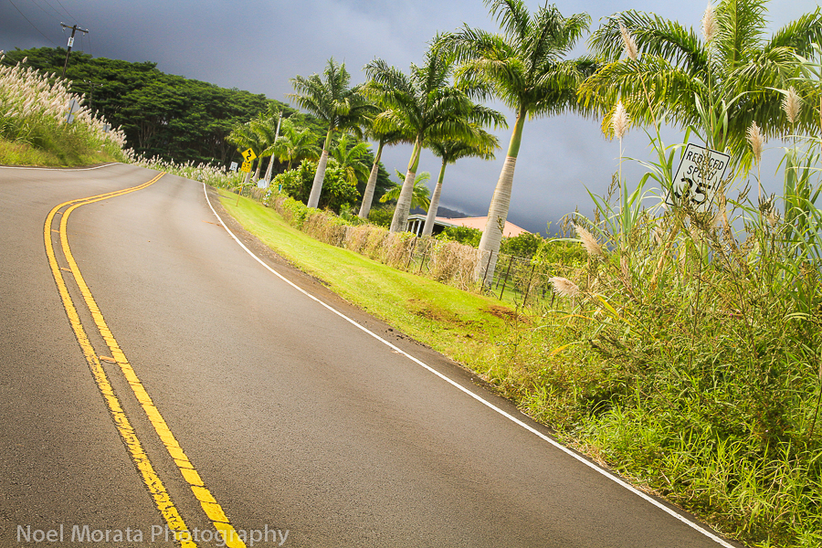 Road trip along the Hamakua coast