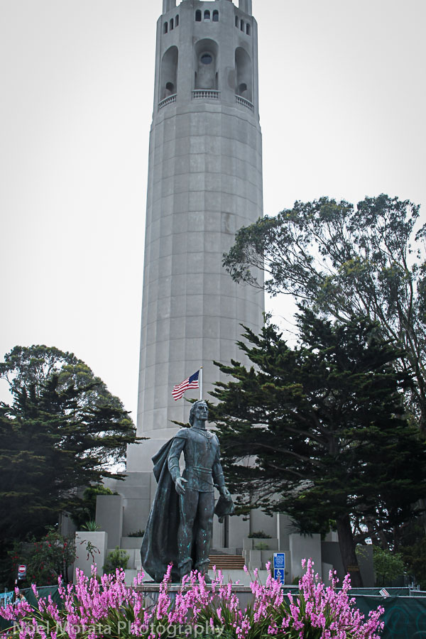 Climb up Greenwich to Coit Tower
