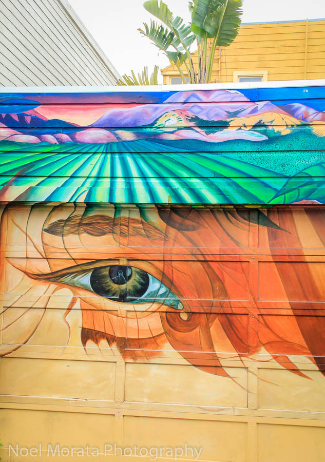 Beautiful artwork on Balmy Lane