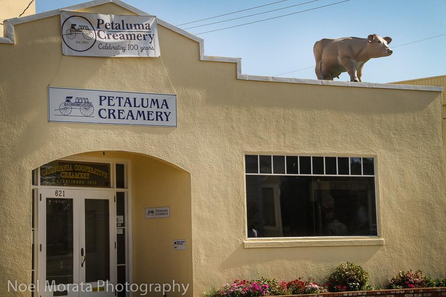 Petaluma Cremery, a century year old cremery in downtown Petaluma