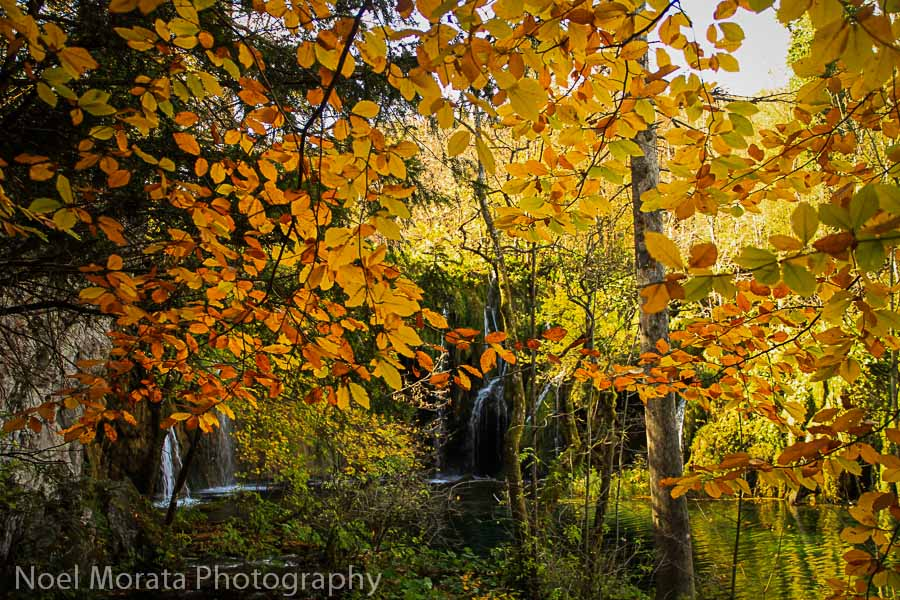 Amazing autumn colors at the waterfalls in the upper terrace of Plitvice