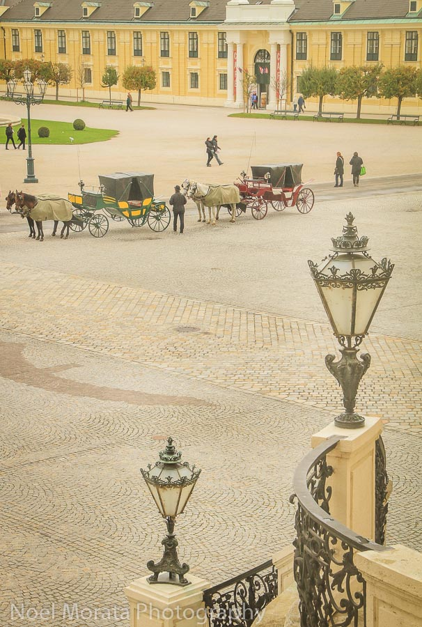 Carriage rides at Schonbrunn Palace, Vienna