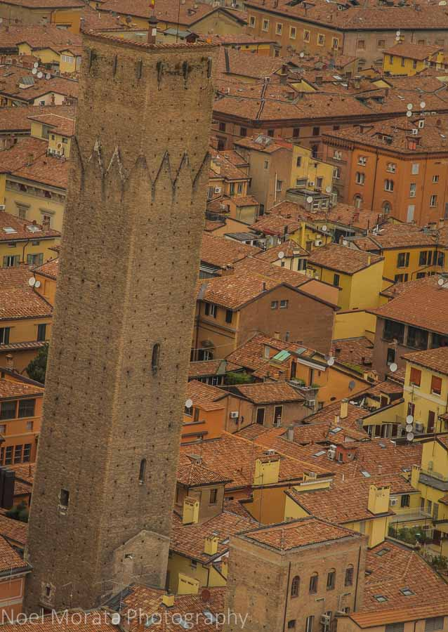 A solitary tower against a sea of ochre