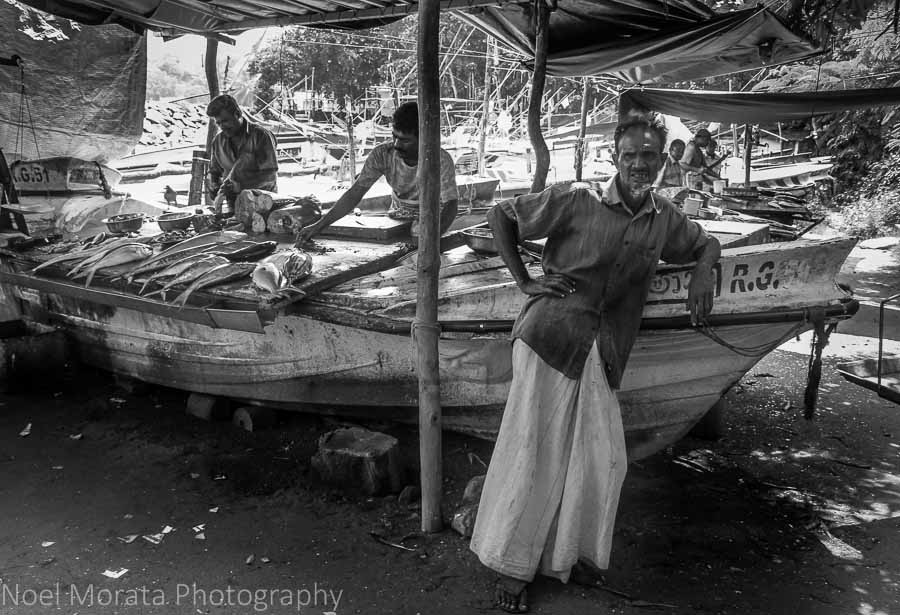 Fish market at Galle, Sri Lanka