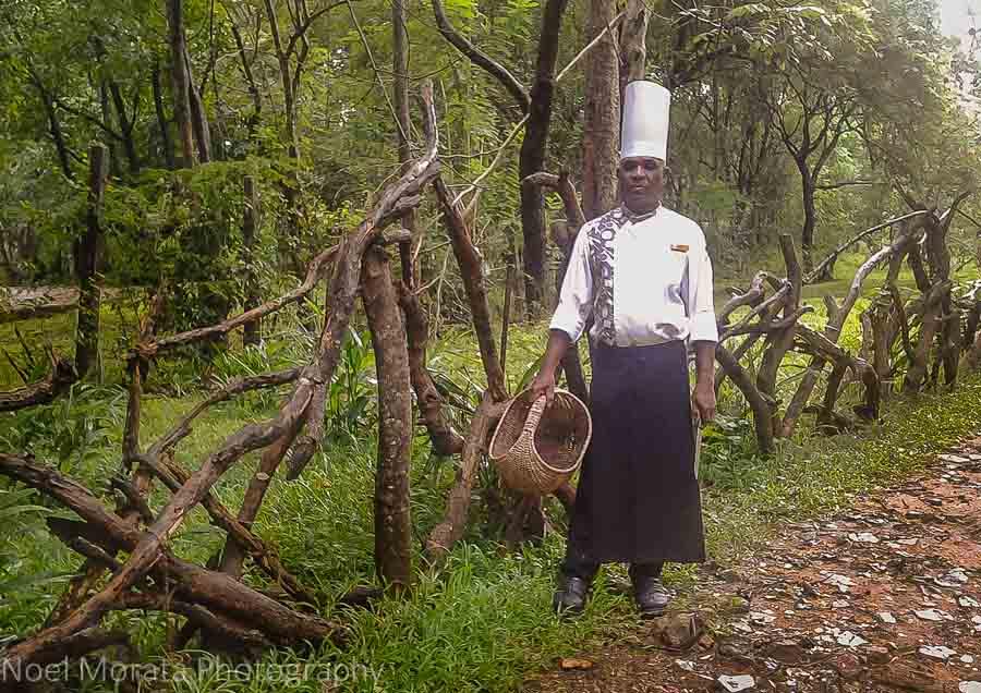 Touring the edible gardens at Cinnamon Lodge in Habanara