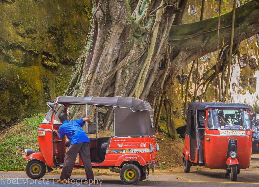 Tuk tuks at the Galle gate entry